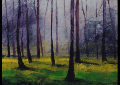 bos bij Udenhout